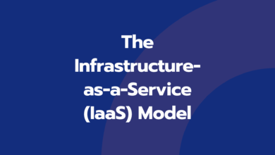 The Infrastructure-as-a-Service (IaaS) Model