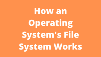 How an Operating System's File System Works