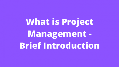 What is Project Management - Brief Introduction