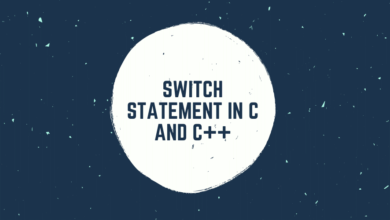 Switch Statement in C and C++