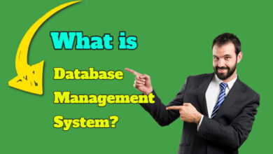 what-is-database-management-system